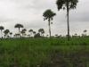 Zizagué - Bénin